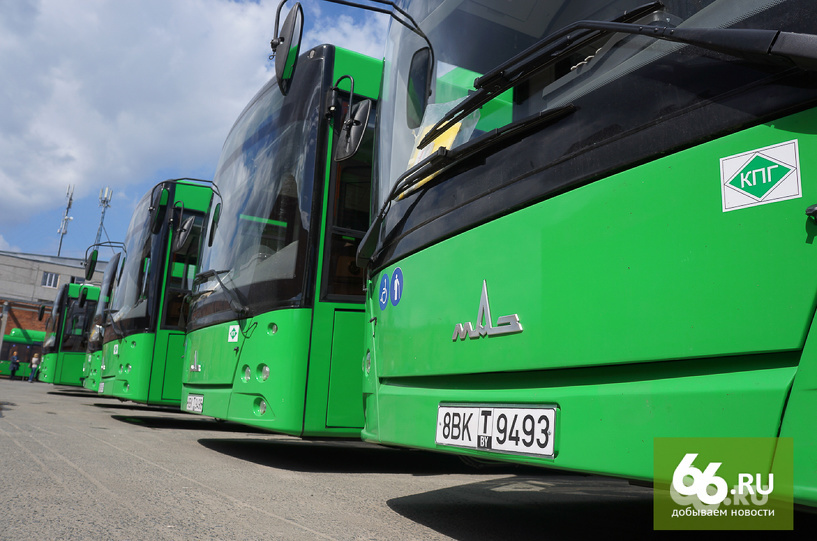 зеленые МАЗы на маршруты,