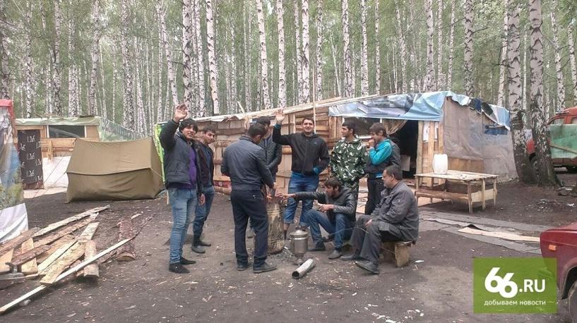 Как в таборе поставить на аву