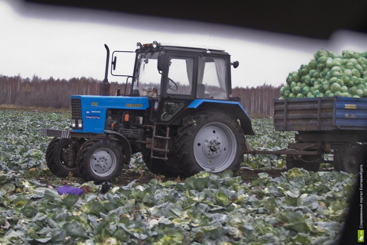Свердловским аграриям выдадут деньги на покупку 811 единиц техники