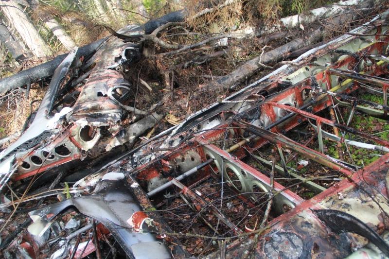Возле упавшего Ан-2 нашли личные вещи погибших