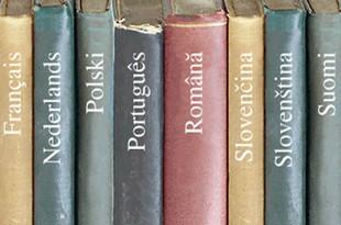 Екатеринбуржцам устроят открытые уроки иностранных языков