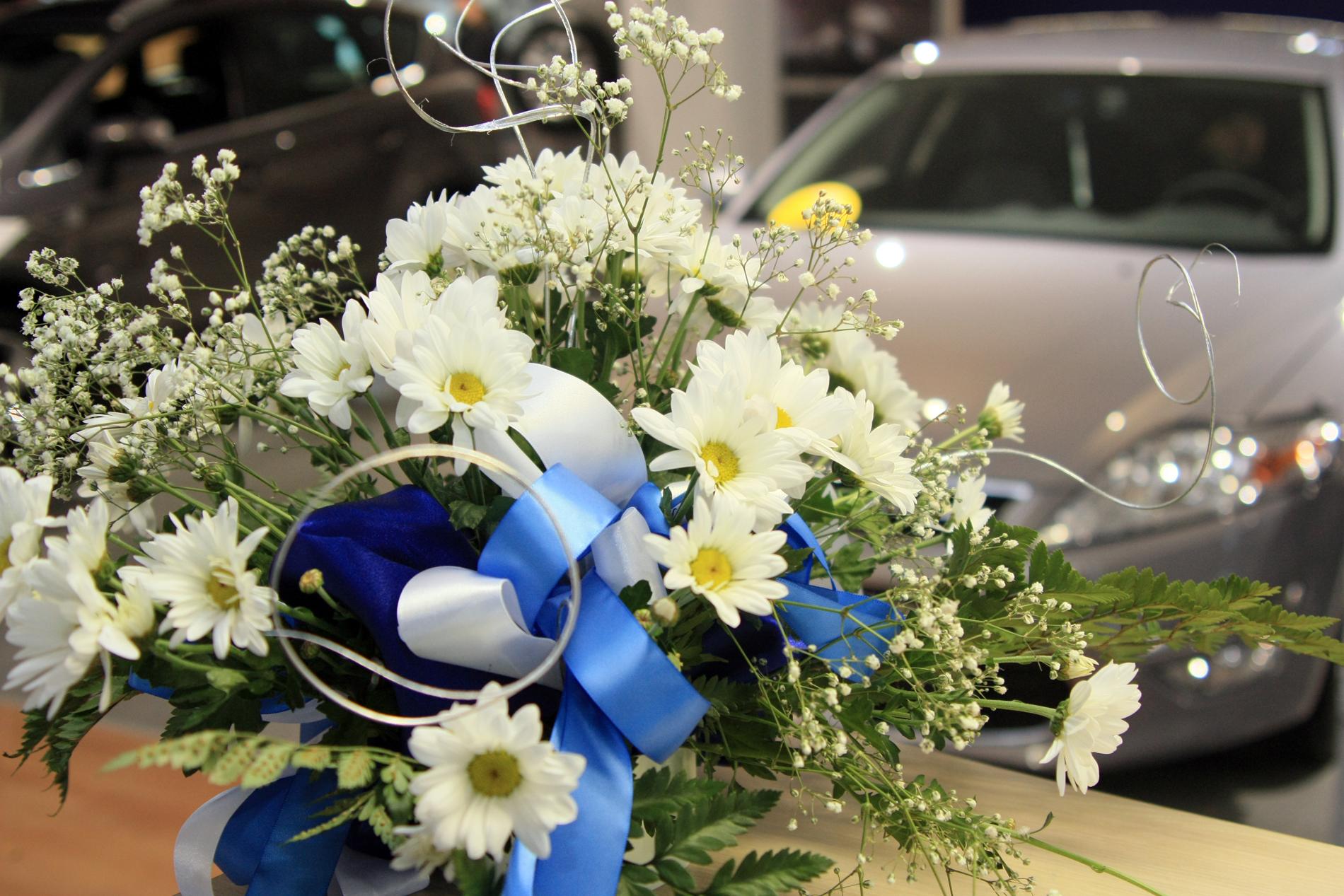 Астры, розы, орхидеи: свердловское правительство купит цветы на полмиллиона