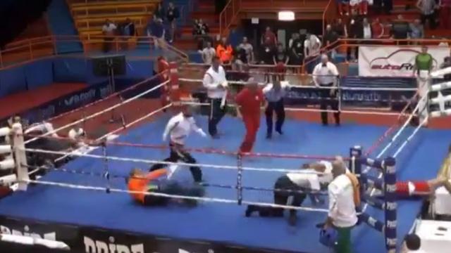 Бои без правил: хорватский боксер нокаутировал судью