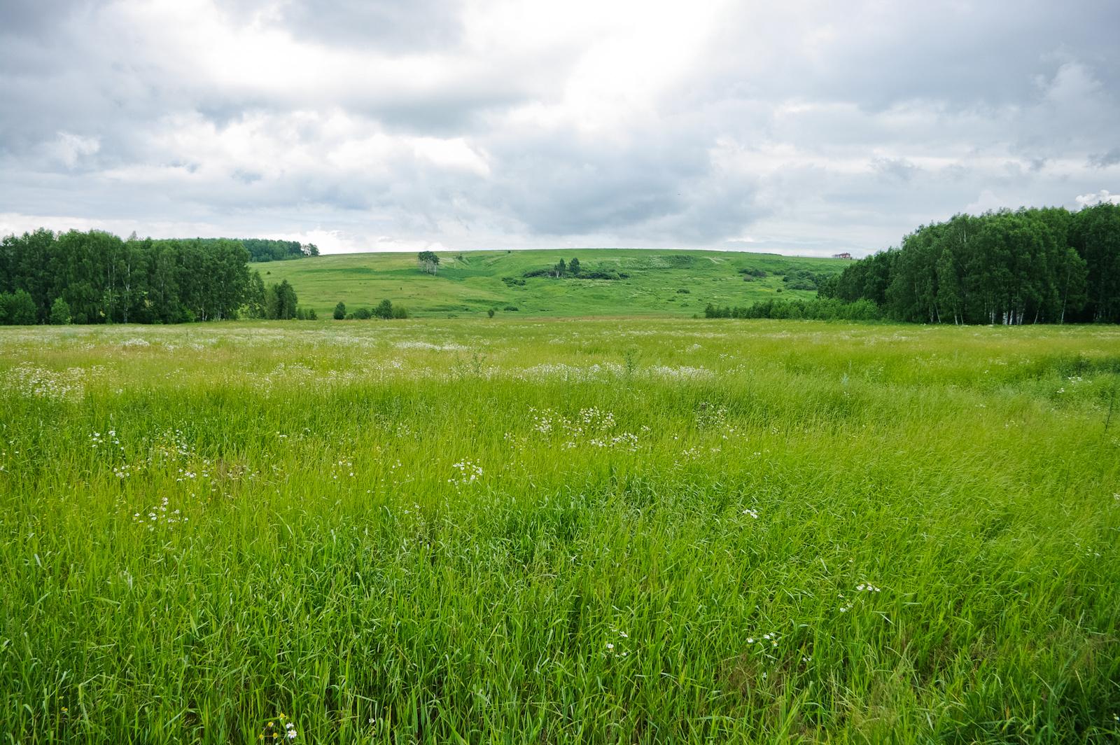 Сотрудникам екатеринбургского предприятия раздавали за деньги чужую землю