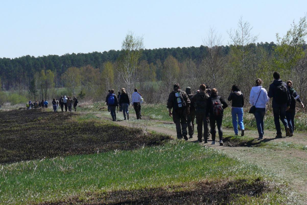 Организаторы Майской прогулки обнародовали маршрут. Схема