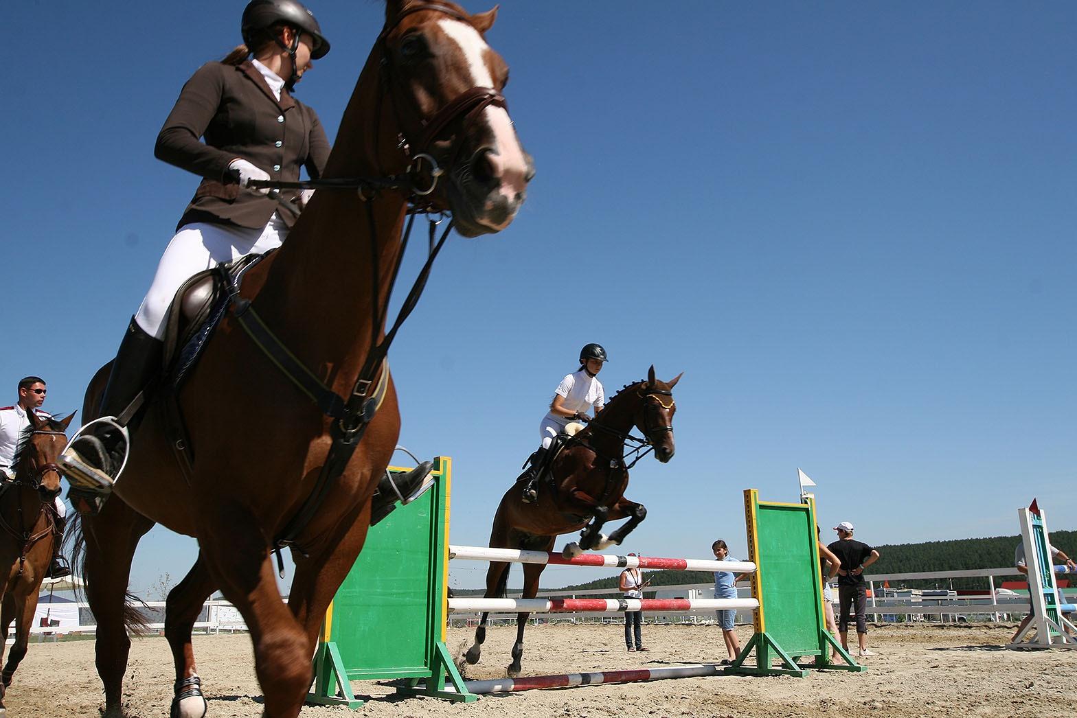 За кубок УрФО по конкуру сразятся более ста спортсменов