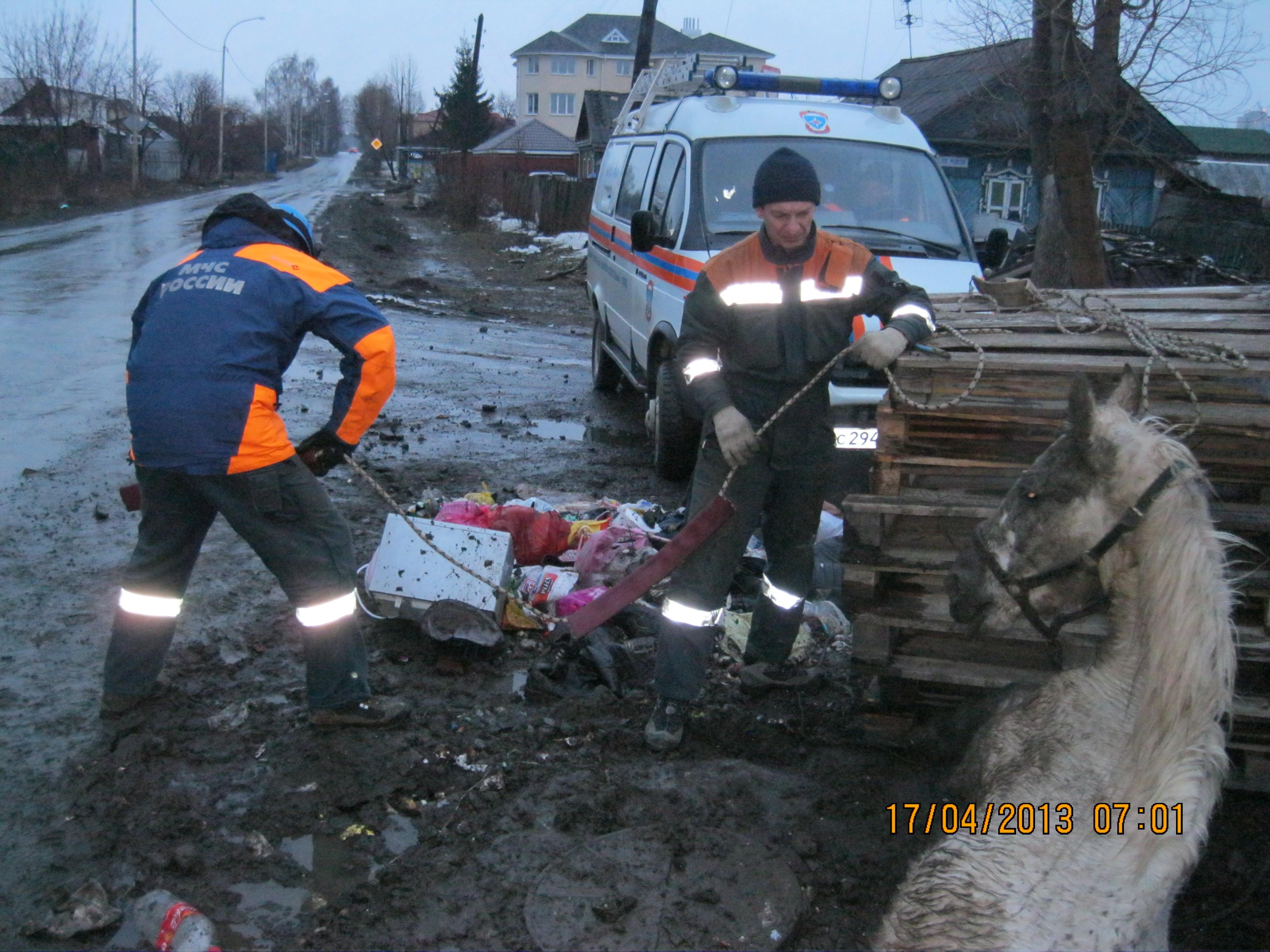 Спасатели достали тело лошади из колодца