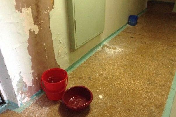 Коридоры поплыли: из-за ливней студенческое общежитие УрФУ утопает в воде