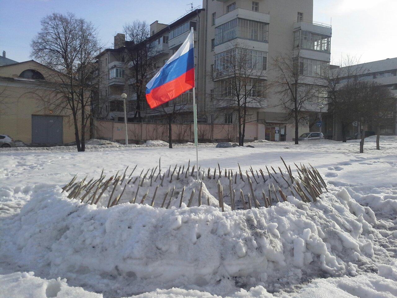 Екатеринбургский художник воткнул 145 палок в снег ради России