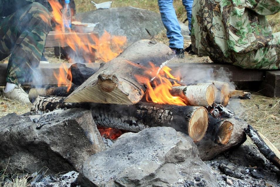 Спасатели предупредили екатеринбуржцев об опасности отдыхать в лесу
