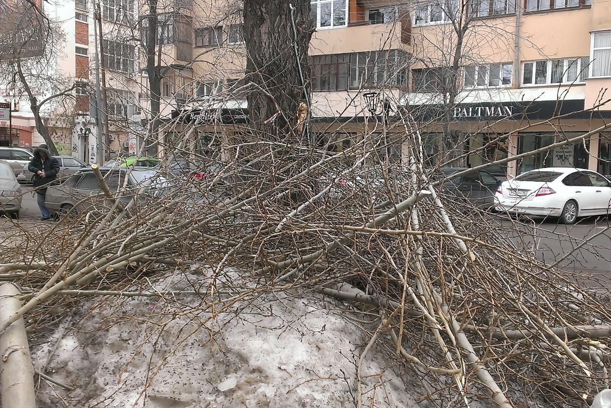 Липович призвал автовладельцев прибрать свои парковочные места