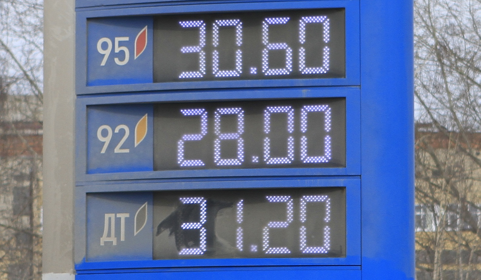 Мониторинг 66.ru: солярка в Екатеринбурге дешевеет