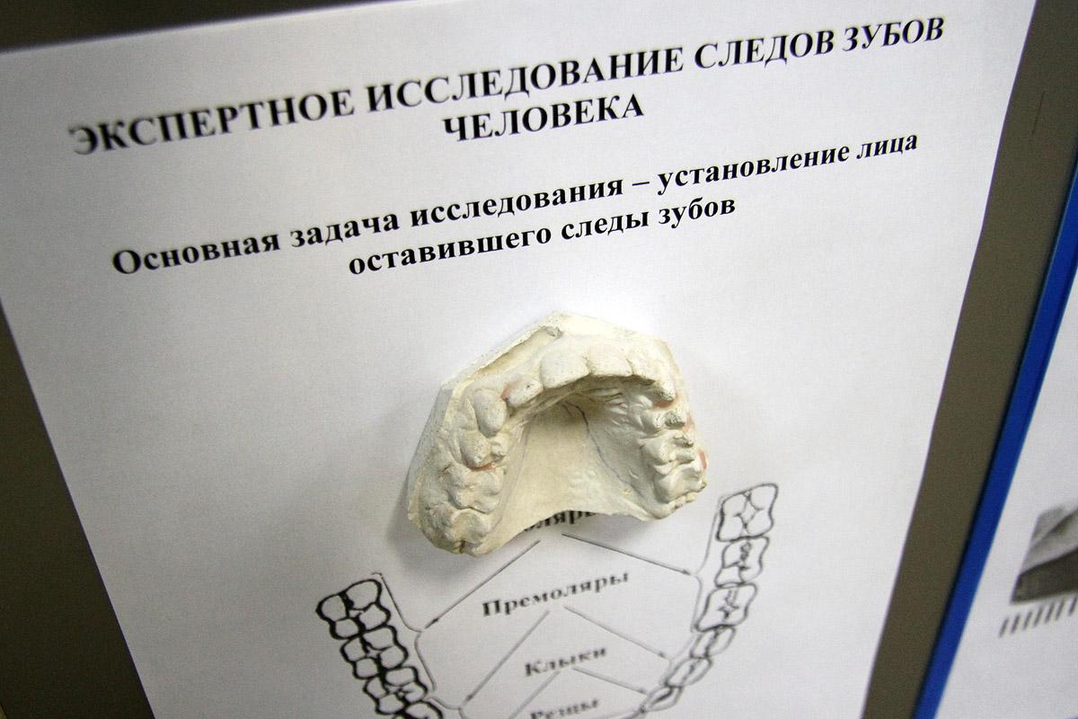Пышминские коммунальщики нашли в подвале человеческие кости