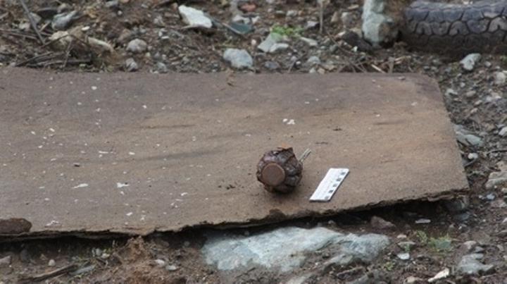 В Нижнем Тагиле обезвредили боевую гранату