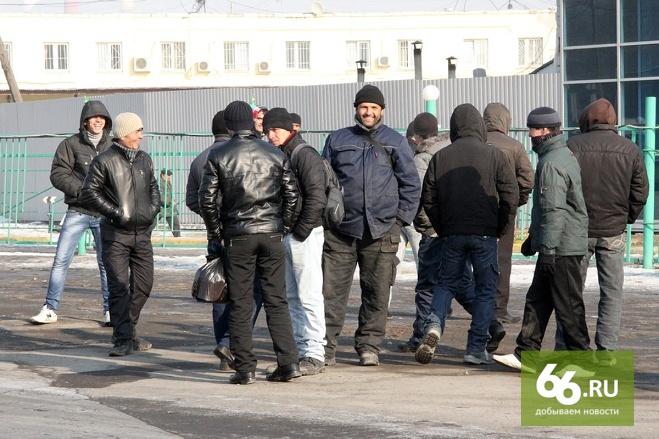 ФМС: менее четверти находящихся в России мигрантов приехали работать