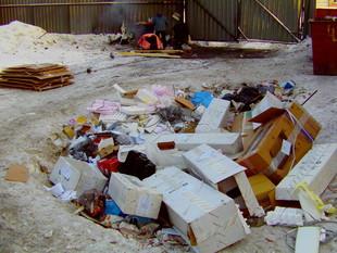 Екатеринбуржцев просят найти переполненные мусорки