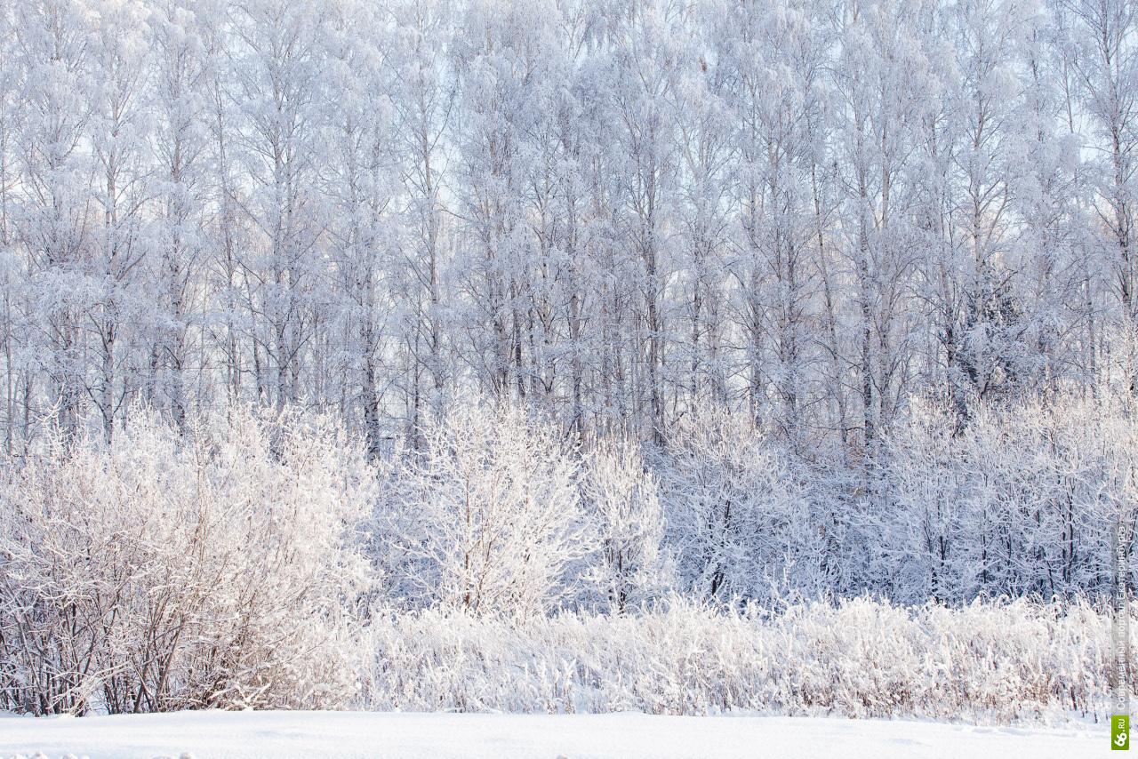 Морозная погода сохранится в Екатеринбурге на все выходные