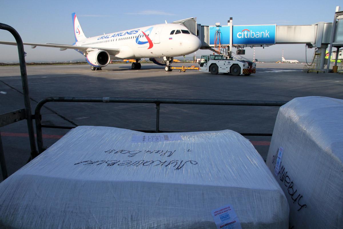 Самолет «Уральских авиалиний» до Москвы не смог вылететь из Кольцово