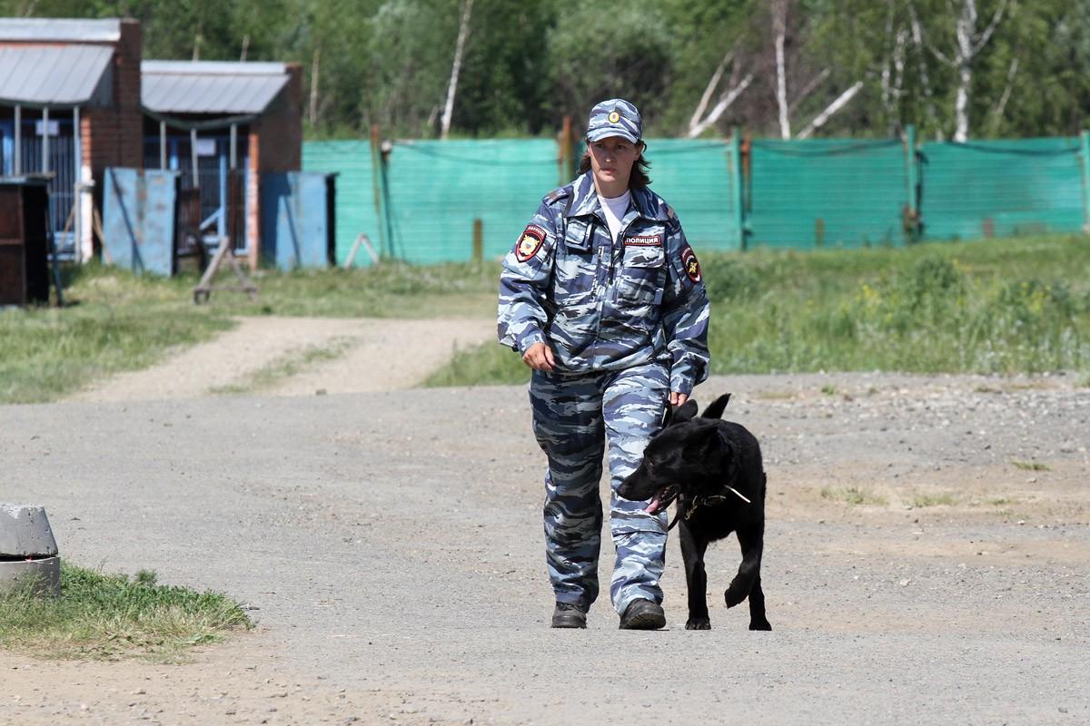 В Верхней Туре уже неделю ищут пропавшую 12-летнюю Диану