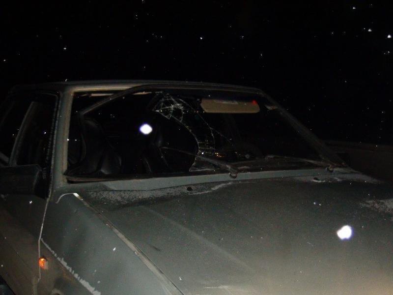 На трассе под Асбестом ВАЗ насмерть сбил пешехода