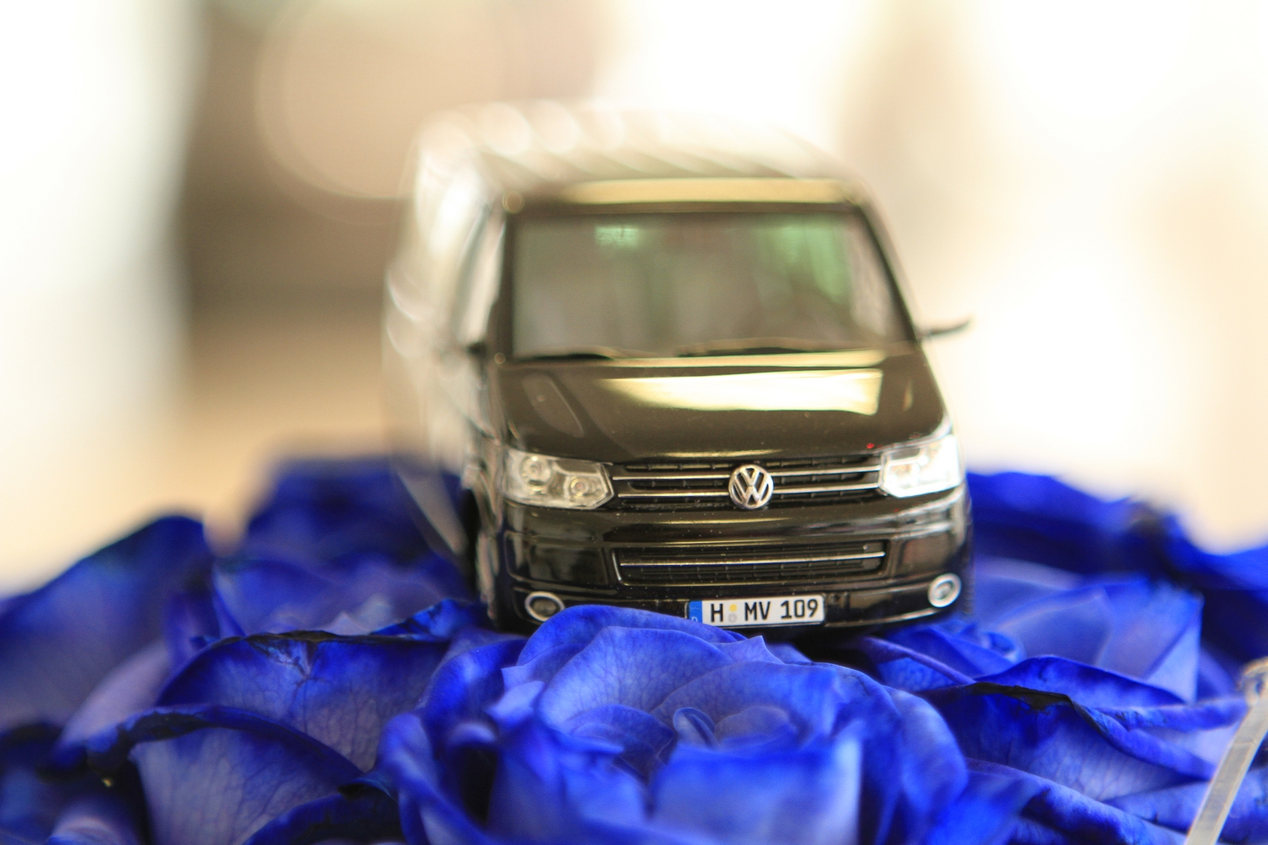 Amarok и Caddy получили прописку: открылся салон Volkswagen NFZ