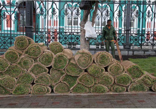 Мэрия взялась за восстановление газонов