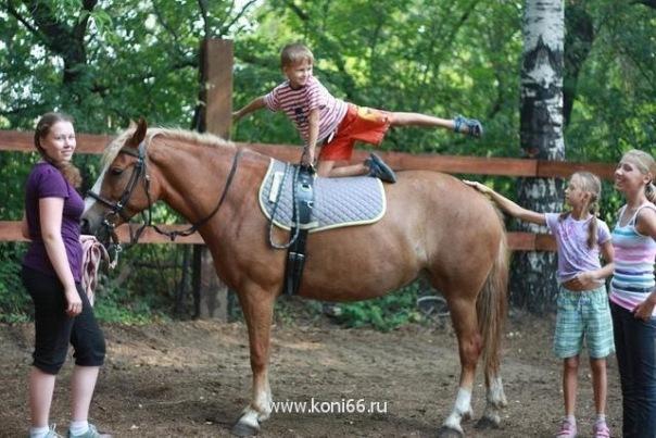 КСК «Вольный ветер» выселяют по требованию ОАО «РЖД»