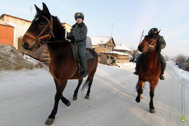 В Первоуральске новогодние гуляния будет охранять конная полиция