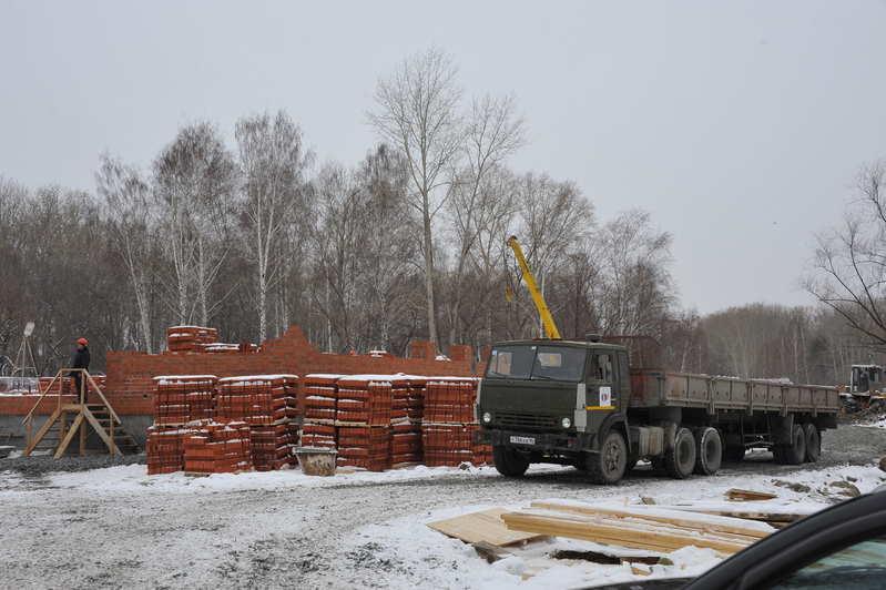 Станции юннатов дали 9 млн рублей, чтобы сохранить 26 деревьев