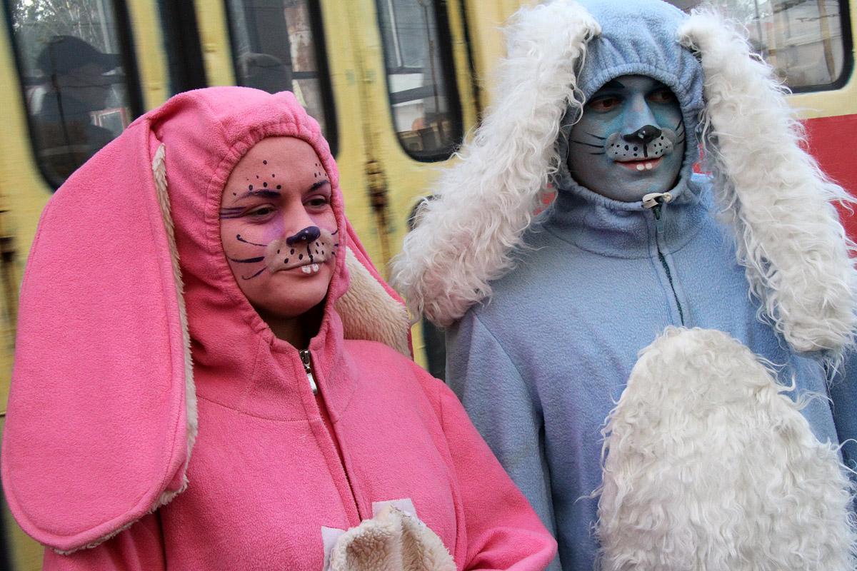 Повышение стоимости проезда в действии: городские трамваи атаковали зайцы