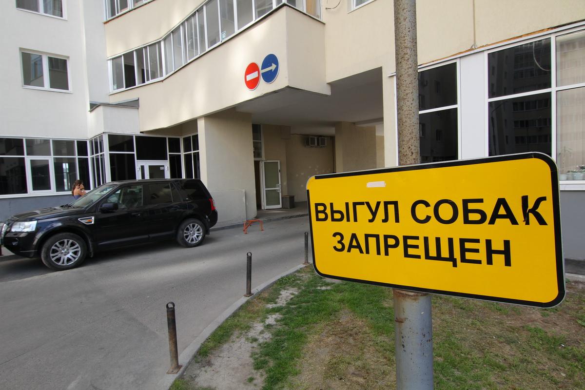 Пшик и все. Уральские студенты придумали спрей, который спасет газоны от собак