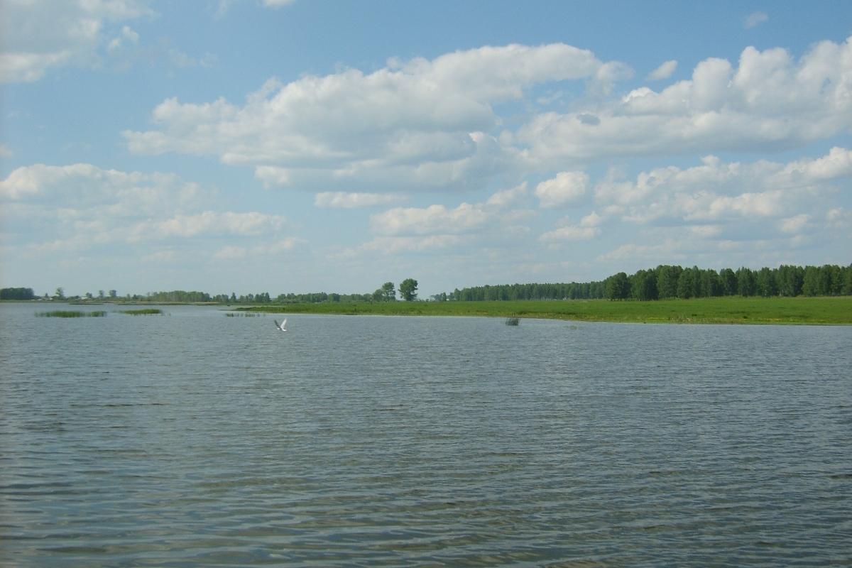 Роспотребнадзор разрешил купаться в 13 водоемах области