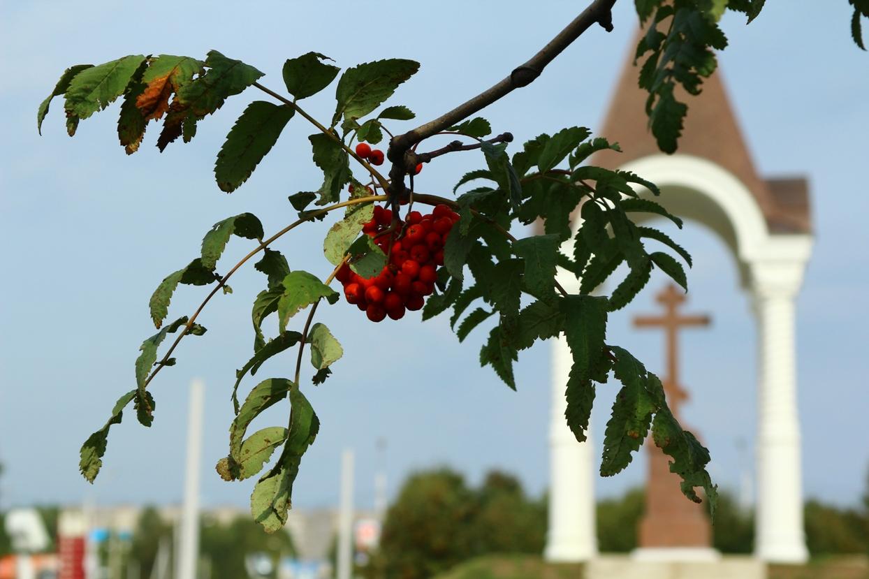 Последняя летняя неделя в Екатеринбурге: немного солнца, немного тепла, немного дождя