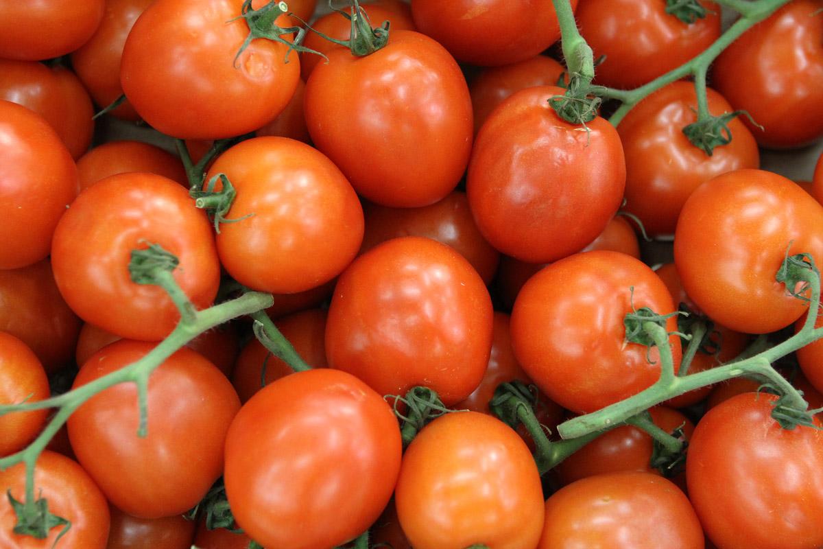 Муж певицы Алсу будет выращивать в «Титановой долине» огурцы и помидоры