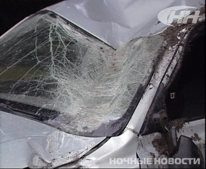 Две женщины на иномарках столкнулись на Сибирском тракте