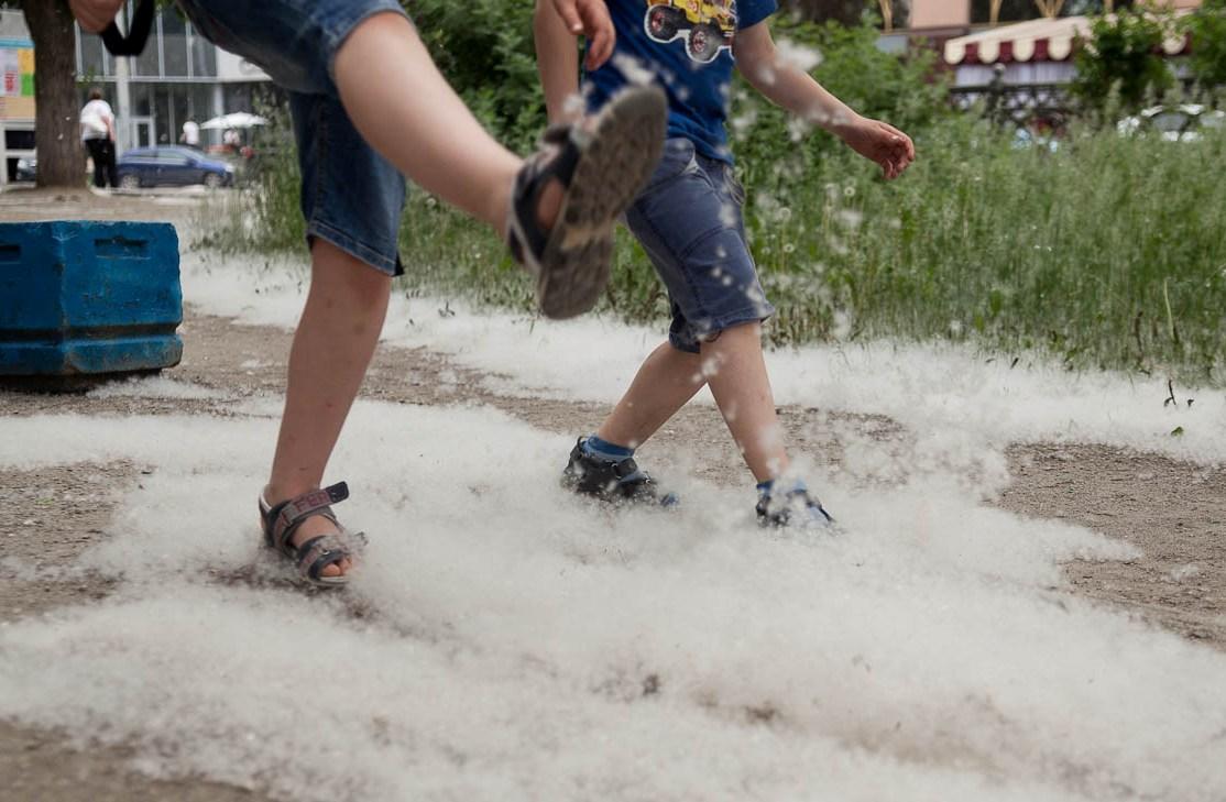 Фоторепортаж 66.ru: тополиный пух, жара, июнь