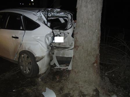 На Карьерной «пьяный» Ford врезался в дерево
