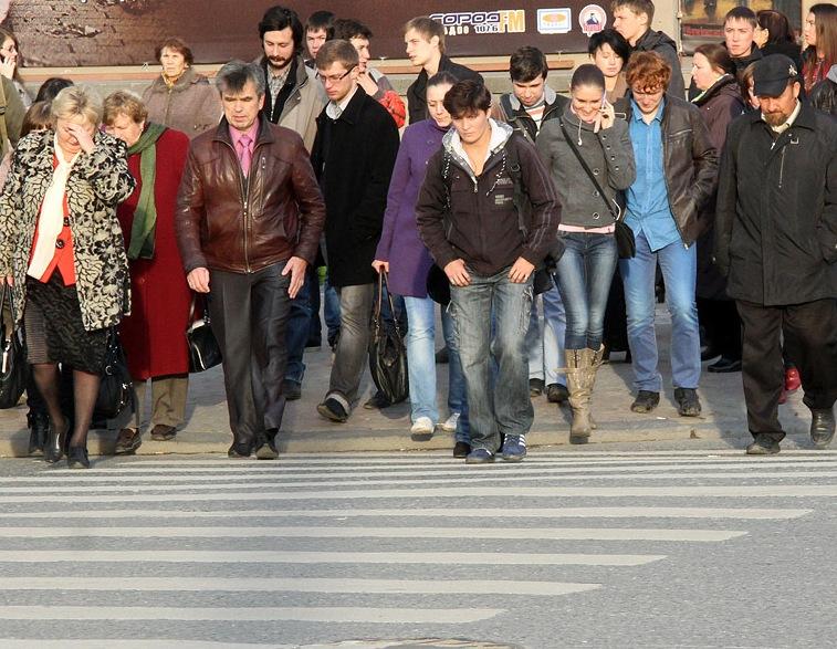 На пластиковые зебры в Екатеринбурге потратят больше 13 миллионов рублей