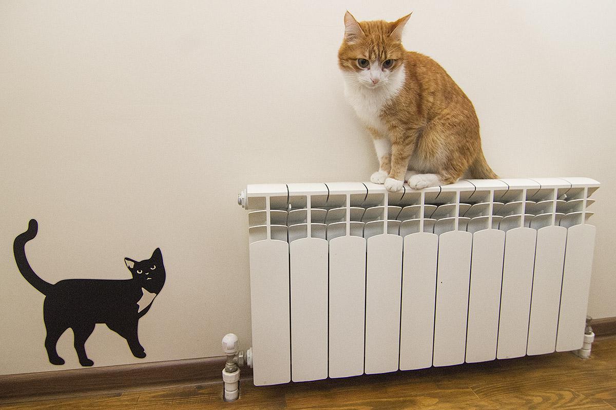 Казалось бы, при чем тут ГИБДД? Пять домов на Юго-Западе замерзают без отопления