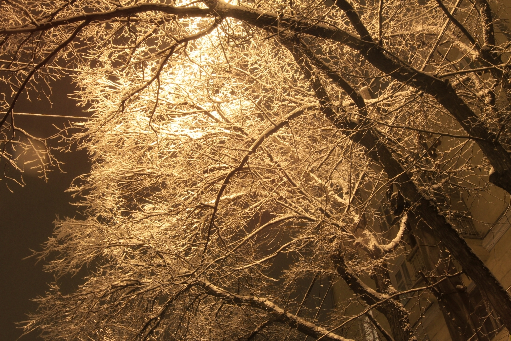 Сидим дома в пледиках: в выходные в Екатеринбурге будет морозно