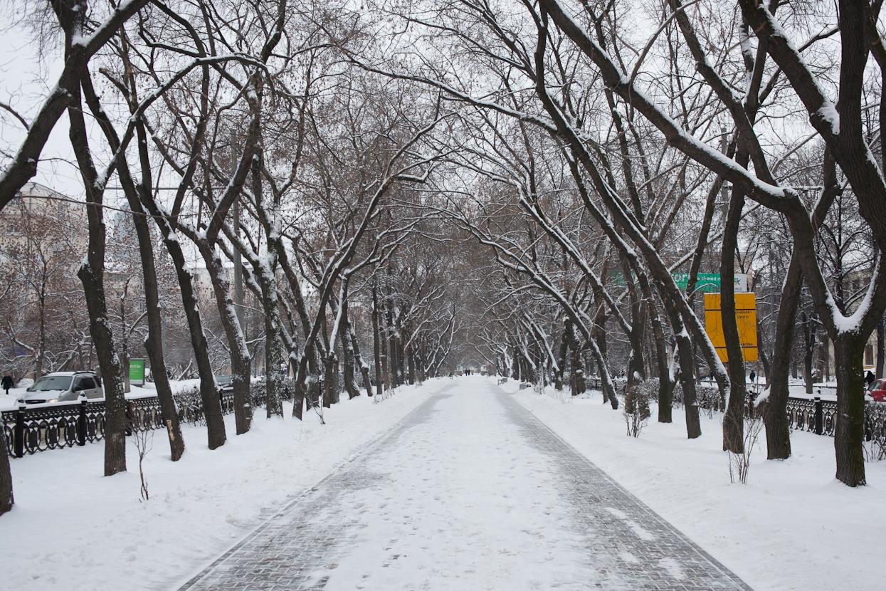 В выходные Екатеринбург ждет резкое потепление