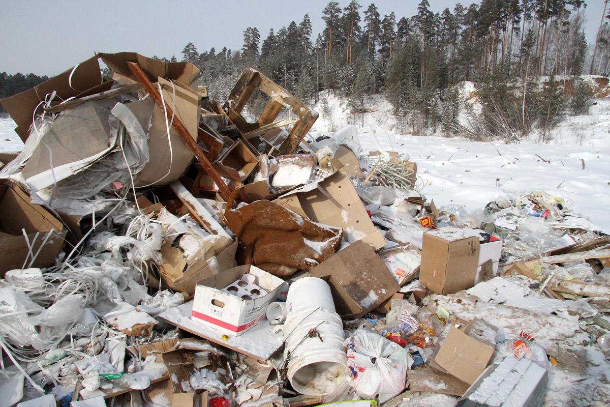 Трэш-монстру в помощь. Северный полигон прирастет заводом по переработке мусора