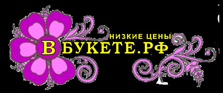 ИП Кауртаева О.Ю.