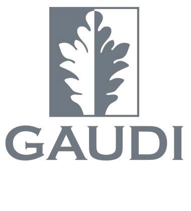Группа компаний Gaudi