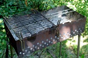В Каменске молодые люди вместо шашлыков приготовили наркотики