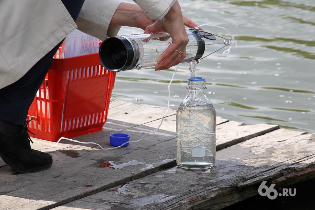 Роспотребнадзор: купаться в екатеринбургских водоемах не рекомендуется