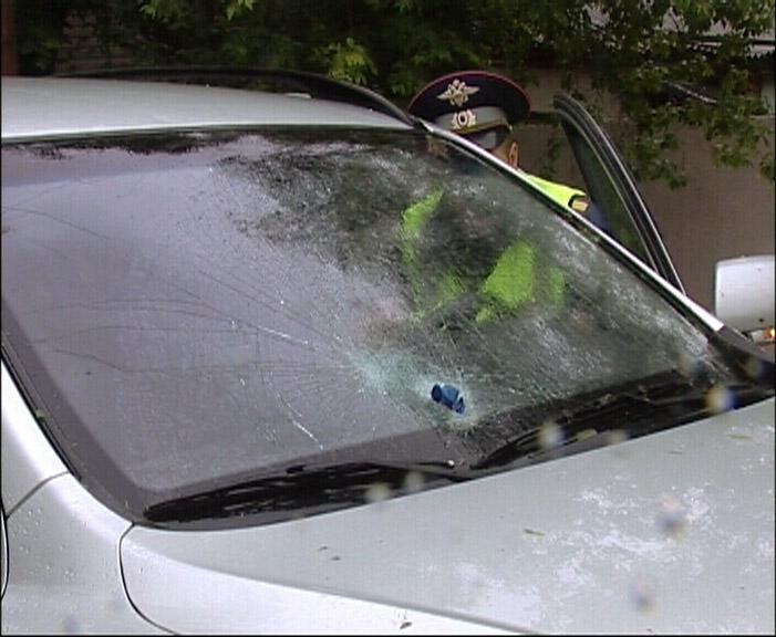 На Шаумяна дерево пробило лобовое стекло автомобиля