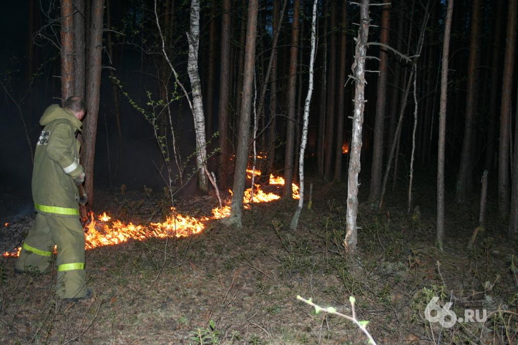 На ВИЗе ночью потушили пожар в лесополосе