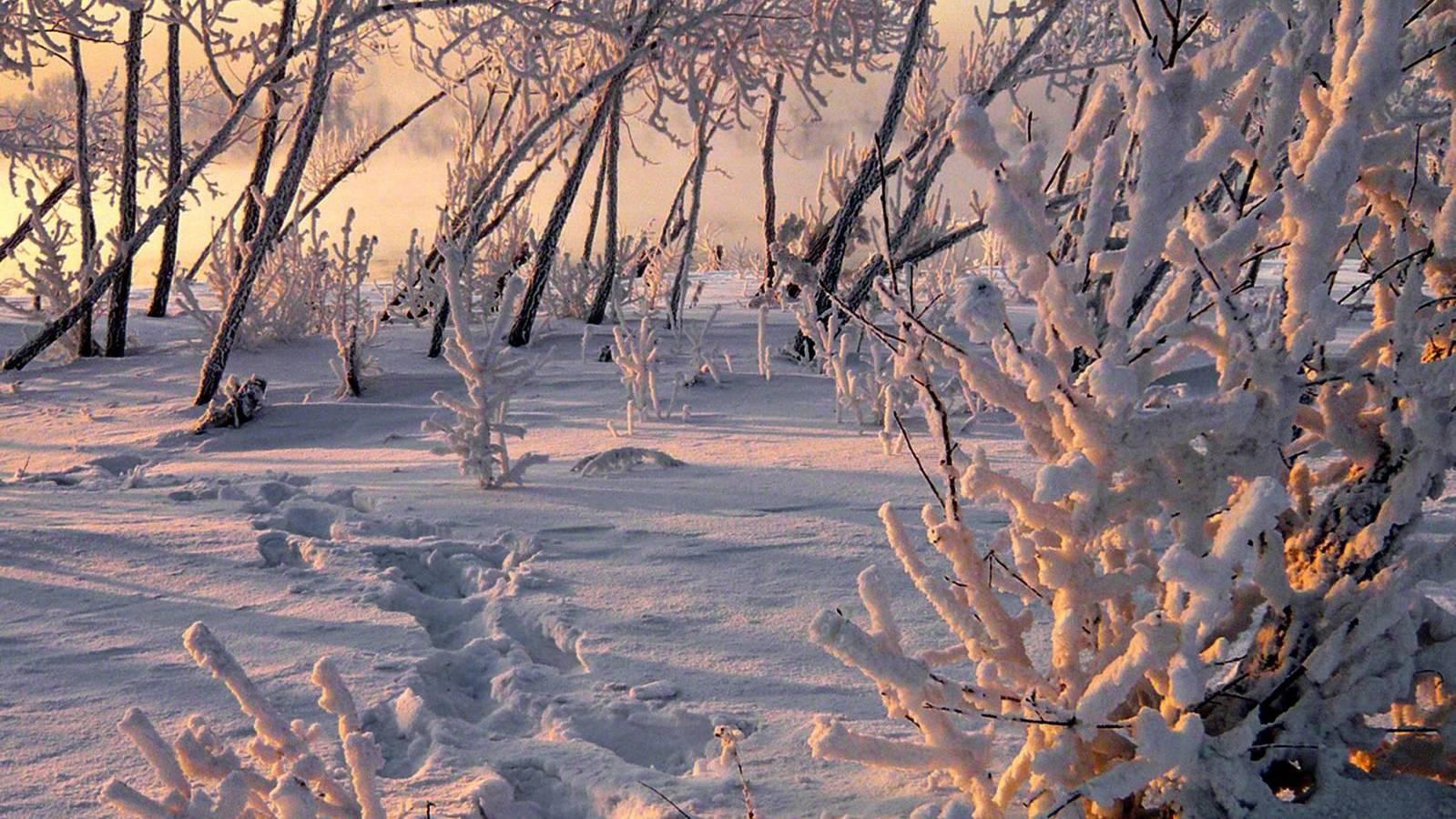 Снег, снег иснег— Погода навыходные
