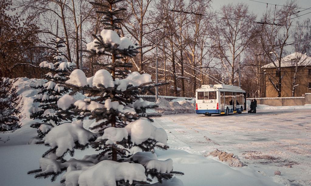 Не замерзнем: всю неделю в Екатеринбурге температура воздуха будет выше -10°C